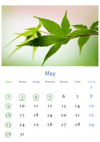2010年5月のカレンダー