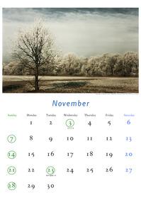 2010年11月のカレンダー