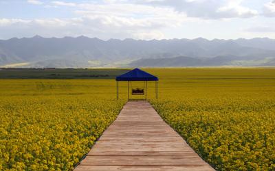 MenYuan_Qinghai_2.jpg