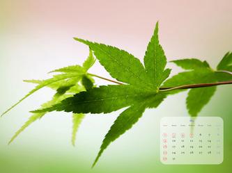 calendar201005_4x3.jpg