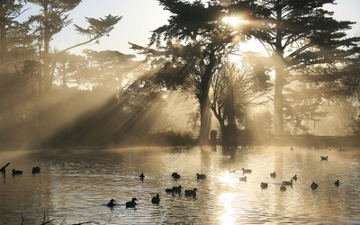 Crepuscular_rays_at_Stow_Lake.jpg