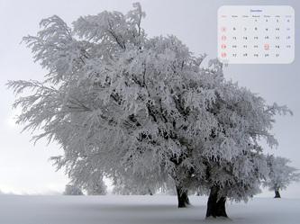 2010年12月のカレンダー壁紙