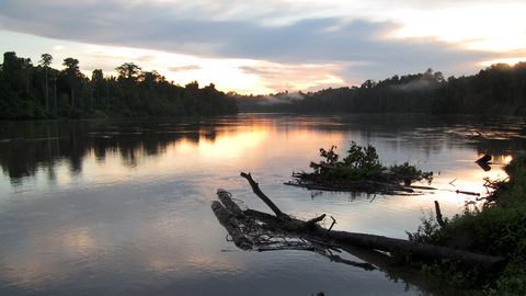 River_at_sunset2.jpg