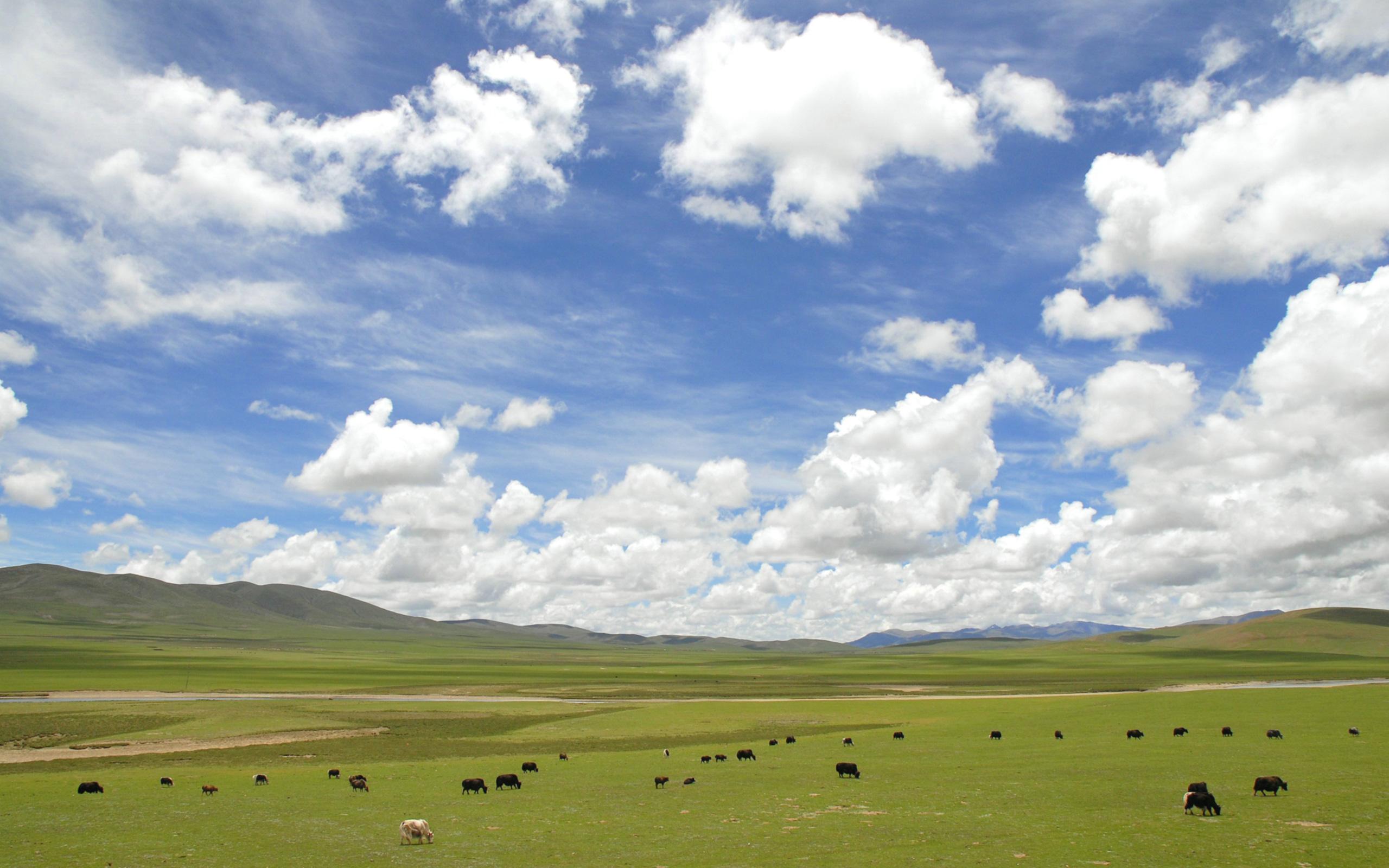 今日の壁紙] チベットの大地と空...